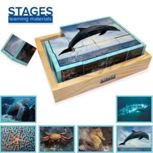 Sea life cube puzzle with one piece out and showing all 6 pictures you can make